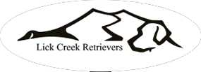 lick-creek-retrievers-logo