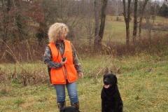 pheasant-hunt2