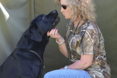 poker-lick-creek-retrievers-with-lisa-vencille