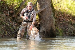 rowdy-lick-creek-retrievers-in-creek